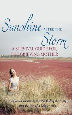 Sunshine After the Storm by Alexa Bigwarfe