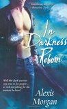 In Darkness Reborn (Paladins of Darkness, #3)