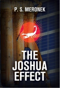 The Joshua Effect by P.S. Meronek