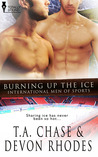 Burning Up the Ice (International Men of Sports, #5)