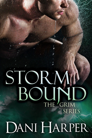 Storm Bound by Dani Harper
