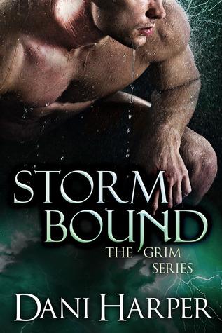 Storm Bound by Dani Harper