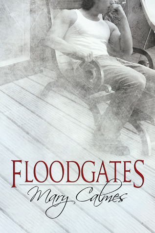 Review : Floodgates by Mary Calmes