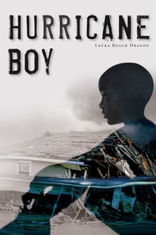 Hurricane Boy by Laura Dragon
